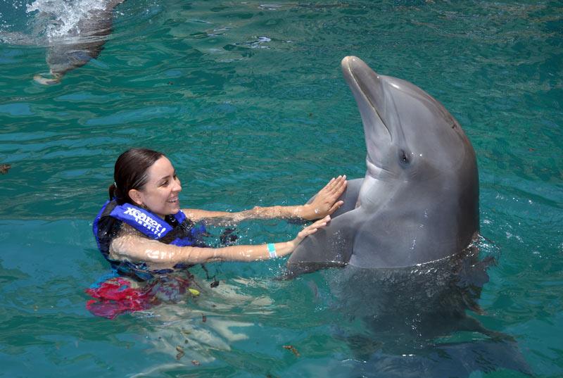Bailando con el delfín