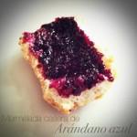 Mermelada de arándano / Blueberry jam